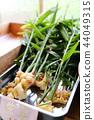 야채, 채소, 생강 44049315