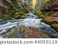 wild river Doubrava, autumn landscape 44050119