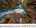 wild river Doubrava, autumn landscape 44050120