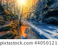wild river Doubrava, autumn landscape 44050121