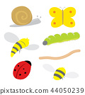Insect Bug Snail Ladybird Butterfly Cartoon Vector 44050239