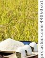 秋天米領域和碗米飯糰 44050561