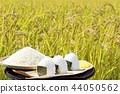 秋天米領域和碗米飯糰 44050562