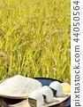 秋天米領域和碗米飯糰 44050564