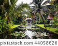 Lotus pond in tropical garden with coconut tree 44058626