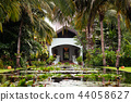 Lotus pond in tropical garden with coconut tree 44058627