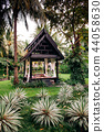 Thai pavilion in lush tropical garden coconut tree 44058630