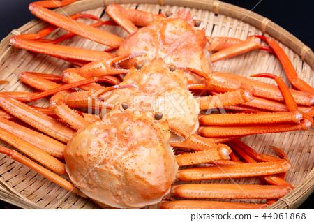 螃蟹食物 44061868