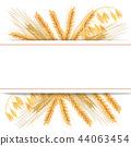 wheat cereals barley 44063454