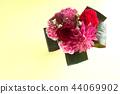 bloom, blossom, blossoms 44069902