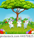 the beautiful view with three rabbits playing  44070825
