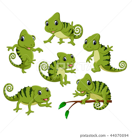the collection of the green chameleon 44070894