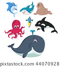 the collection of the fauna and animals in the sea 44070928