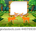 the wooden board blank space with two cute dear  44070939