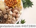 什錦蘑菇 44072800