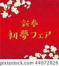 Plum blossom illustration 44072826