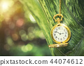 Golden rocket watch hanging on tree branch 44074612