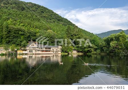 kinrin lake afternoon reflections 44079031