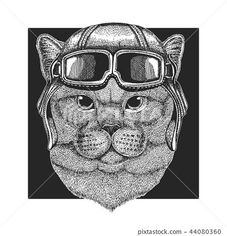 wearing aviator hat. Print for children clothes, tee, t-shirt. Pilot wild animal 44080360