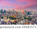 Tokyo, Japan Cityscape at Dusk 44081571