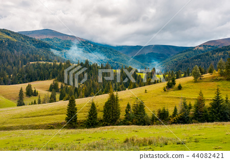 overcast autumn day in mountains 44082421