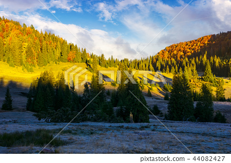 early autumn morning in mountains 44082427
