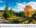 autumn, beautiful, sunrise 44082434