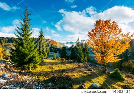 beautiful sunrise in autumn countryside 44082434