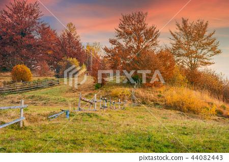 reddish sunrise in autumn countryside 44082443
