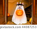 halloween  ghost  dog trick or treat 44087253