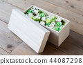 rose, roses, a box 44087298