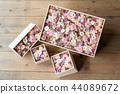 rose, roses, box 44089672