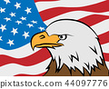 Bald eagle with American flag 44097776
