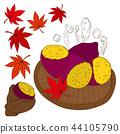 고구마, 단풍, 가을 44105790
