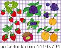 strawberries, strawberry, blueberries 44105794