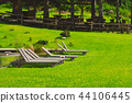 Row of wooden sunchairs in garden 44106445