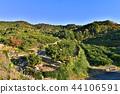 autumnal, orchard, heap 44106591