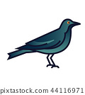 Crow gradient illustration 44116971