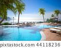度假村泳池 44118236