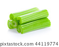 celery isolated on white background 44119774