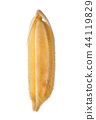 macro paddy rice on white background 44119829