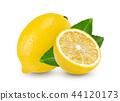 lemon with leaf isolated on white background 44120173