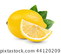 lemon with leaf isolated on white background 44120209