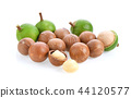 macadamia nuts isolated on white background. 44120577