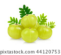 Indian gooseberry isolated on white background 44120753