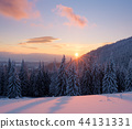 winter,snow,snowy 44131331