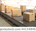 Conveyor line with cadrboard boxes  44134846