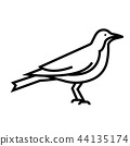 Crow Line illustration 44135174