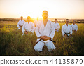 karate, exercise, group 44135879
