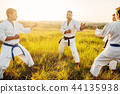 karate, sport, exercise 44135938